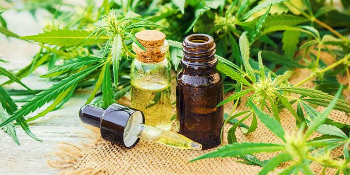CBD è formato dai cannabinoidi che sono presenti nella pianta di cannabis